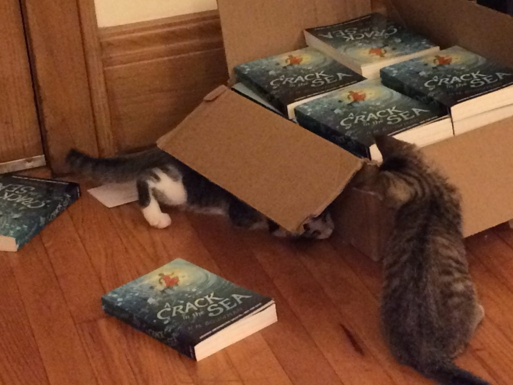 My cats love my book! …Or maybe they just love the box.